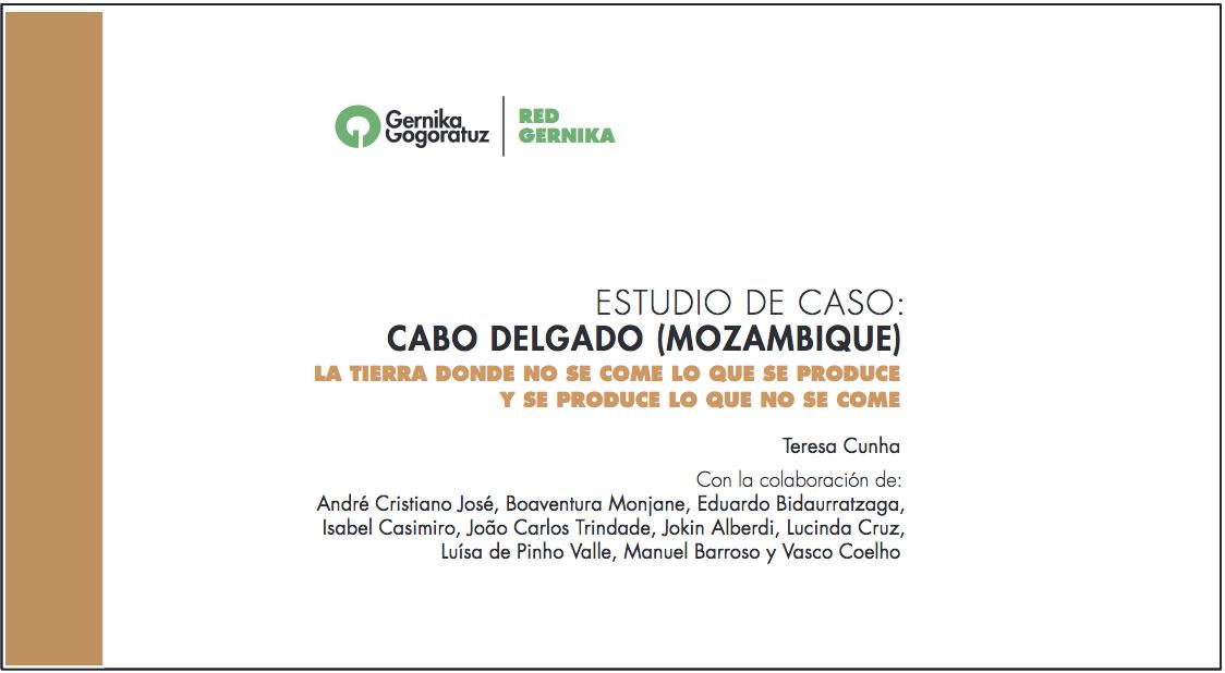 estudio de caso Cabo Delgado por Teresa Cuhna